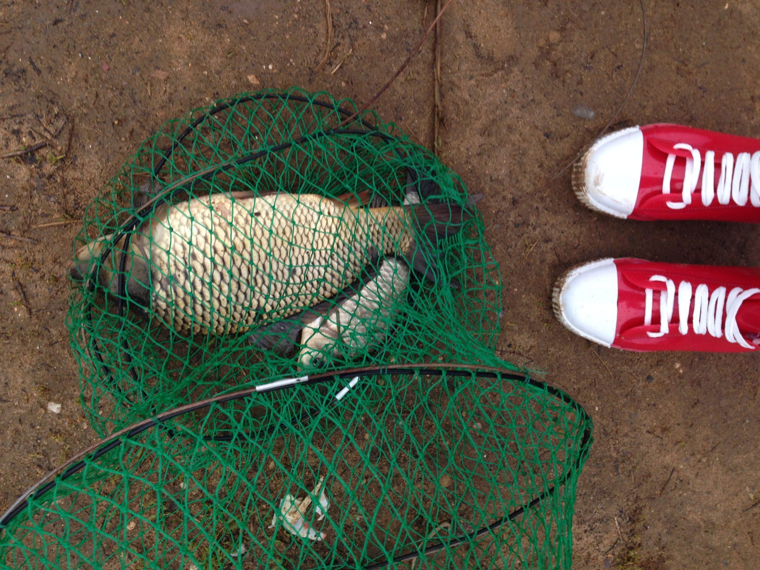 Мужчина и рыбалка